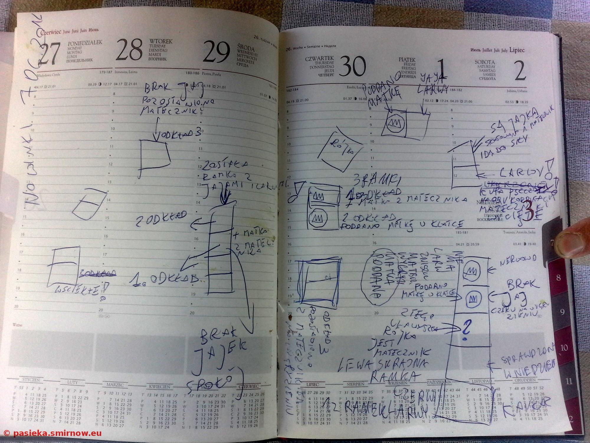 Dużo, dużo notatek z jednego dnia i jednego pasieczyska
